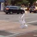 Photos: レジ袋の 進化 … 二足歩行の レジ袋 …1