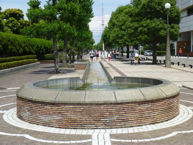 Photos: 三笠公園通り@横須賀20150607