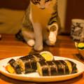 Photos: こら!ちょんちょんするな!