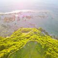 写真: ドローン空撮2