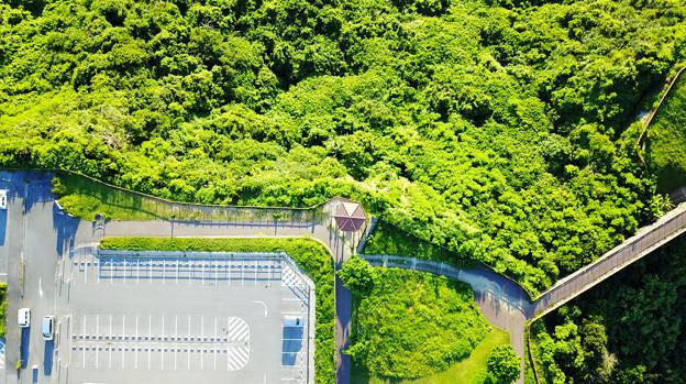 Photos: ドローン空撮 赤瓦の屋根?