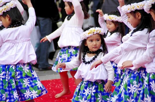 津久井湖さくら祭り11「次、何だっけ?」