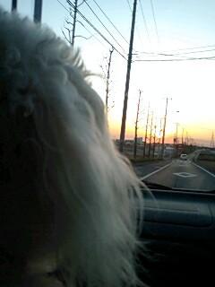 夕焼けの、帰り道。