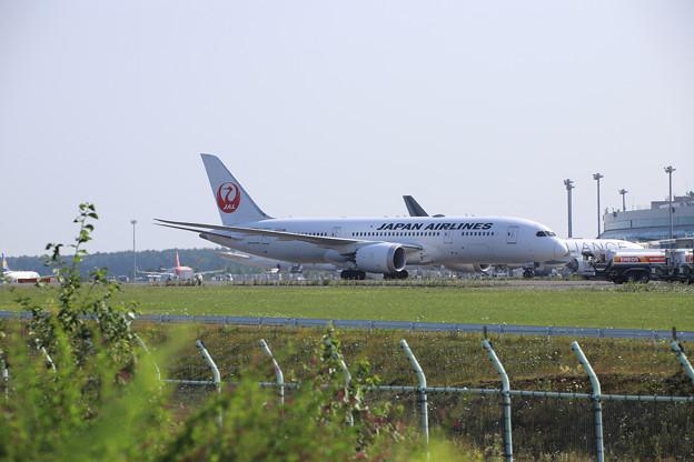 JA828J-1