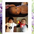 Photos: A4-spring6-sample