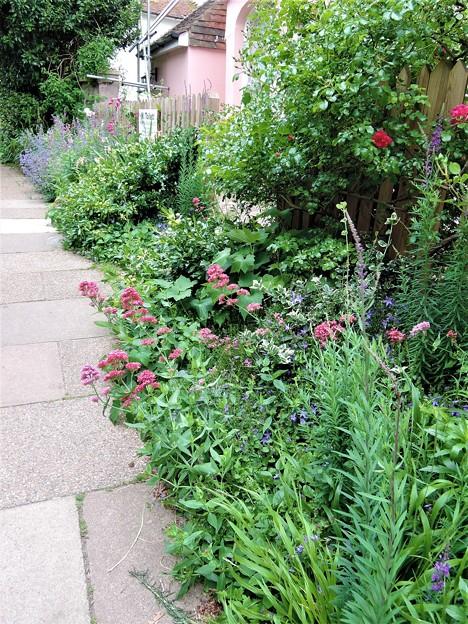 路沿いの花壇