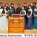Photos: サリクスカンマーコア  Salicus Kammerchor