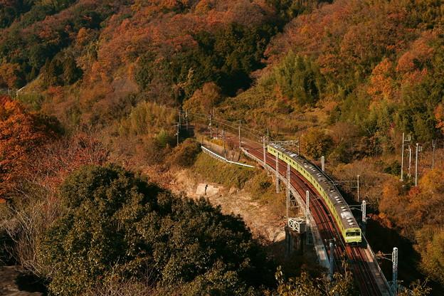 惜別の晩秋。(関西本線:大阪府)