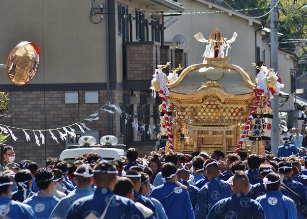 祭り(5)