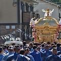写真: 祭り(5)