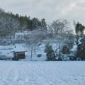 Photos: 雪が降りました