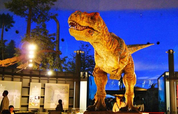 Photos: ティラノザウルス動刻