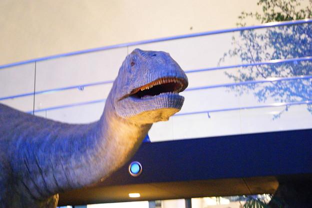 恐竜 (2)