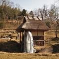 Photos: 冬の水車小屋