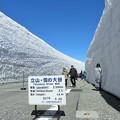 写真: 雪の壁