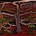 写真: モミジ 紅葉  360度パノラマ写真