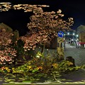 写真: 熱海桜 ライトアップ 360°パノラマ写真(2) HDR