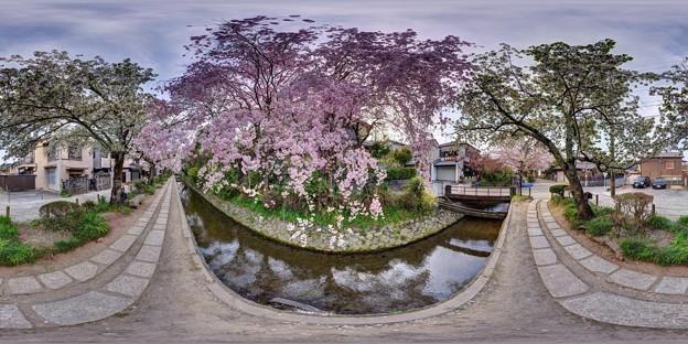 「哲学の道」 360度パノラマ写真〈2〉