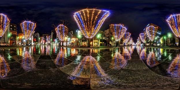 青葉シンボルロード イルミネーション 360度パノラマ写真