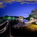 Photos: 奈良公園 鷺池 浮見堂 桜 ライトアップ 360度パノラマ写真