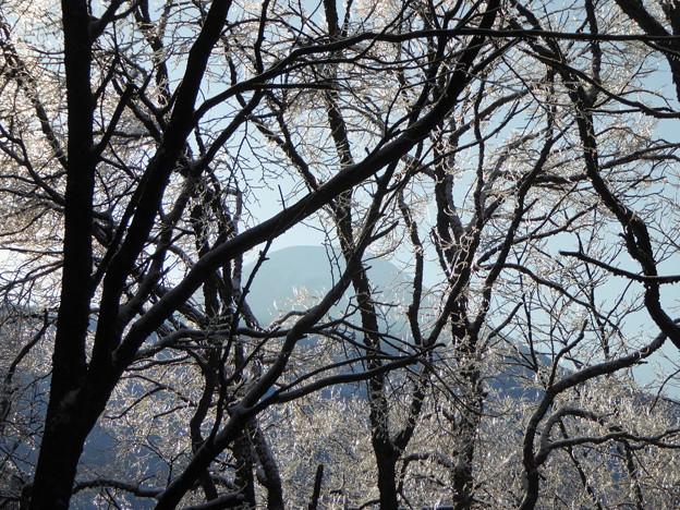 蓼科山と雨氷