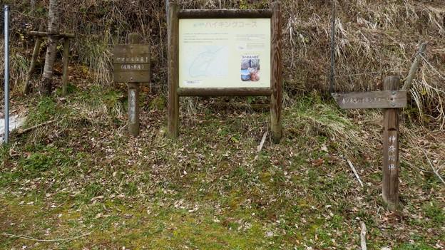 春の木丸ハイキングコース