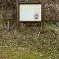 Photos: 春の木丸ハイキングコース