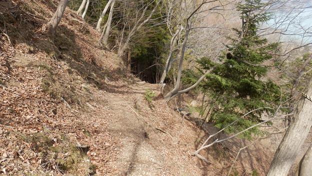 Photos: これが本来のハイキングコース(笑)