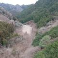 Photos: 鳥屋待沢堰堤を山側から