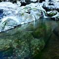 写真: 奈良-4