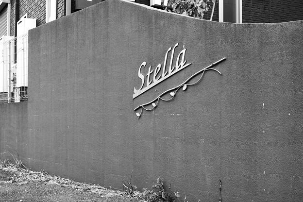 写真: Stella