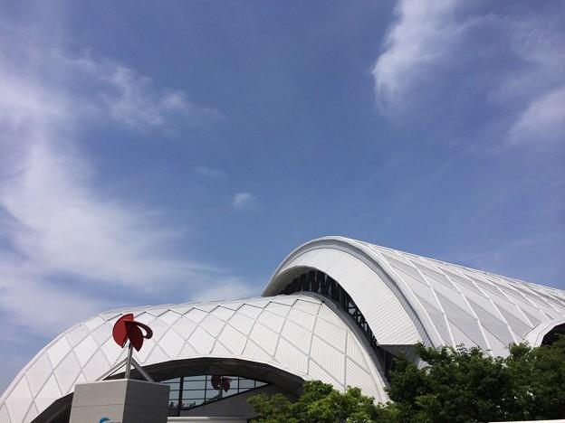 写真: 140528 東京辰巳国際水泳場