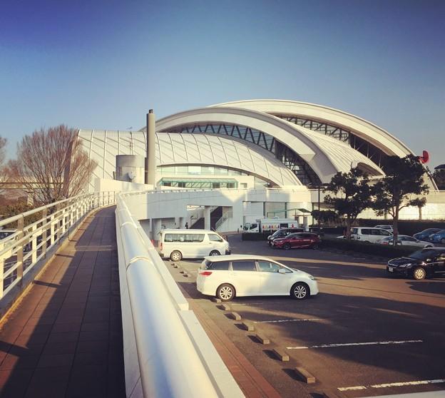 160113 東京辰巳国際水泳場