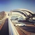 写真: 160113 東京辰巳国際水泳場