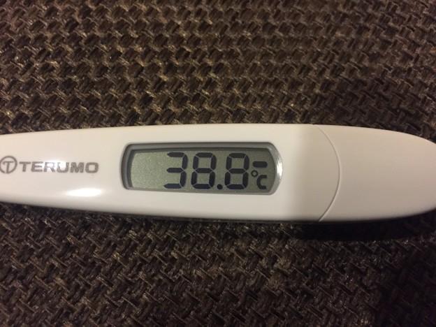 写真: 150117 インフルエンザ