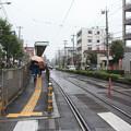 Photos: 都電荒川線熊野前電停