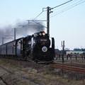 Photos: SL銚子 D51498+旧型客車+DE10 1752 (18)