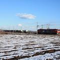 積雪の中を行くEH500コンテナ貨物列車 (10)