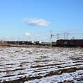 積雪の中を行くEH500コンテナ貨物列車 (11)