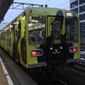 Photos: 鹿島臨海鉄道6000形6013 「クリーニング専科」ラッピング