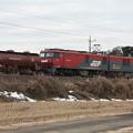 冬の田園風景を行く安中貨物5094レ EH500-25