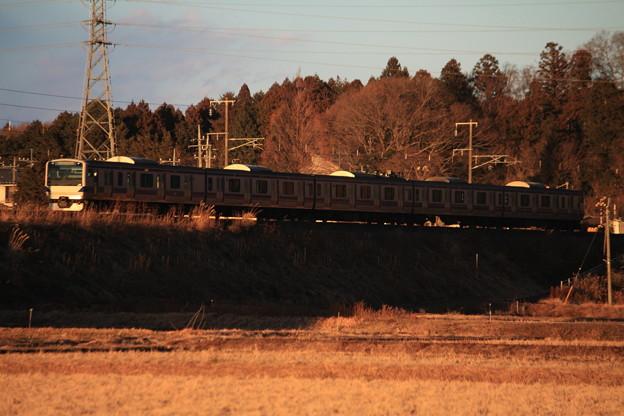 夕陽を浴びながら田園風景を行く水戸線E531系 (1)