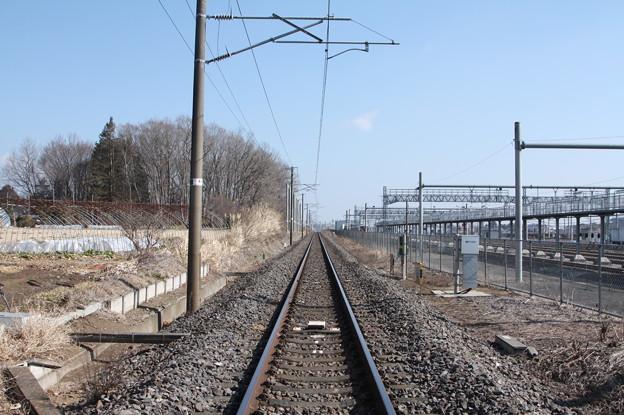 常磐線原坪踏切下りから線路を眺める (2)