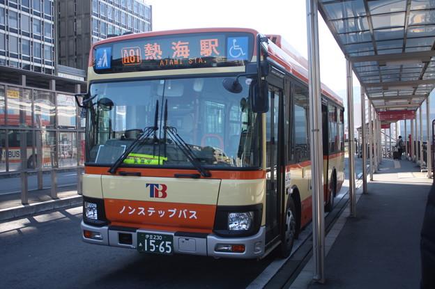 伊豆東海バス 新型エルガミオ 伊豆230あ1565