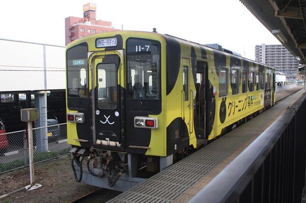 ひたちなか海浜鉄道 キハ11‐7 「クリーニング専科」ラッピング