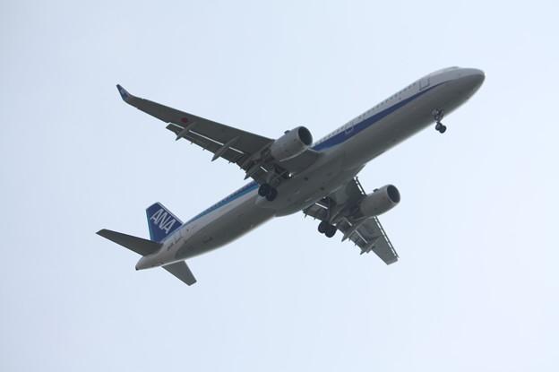 Photos: ANA A321-200N JA113A (1)