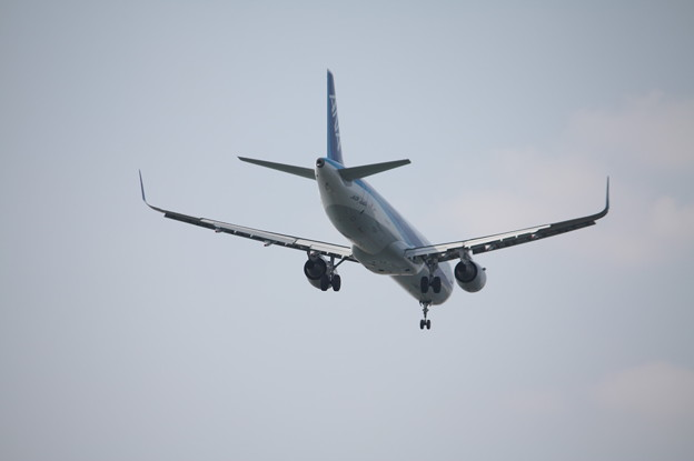 Photos: ANA A321-200N JA113A (2)