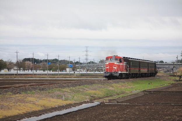 回6100レ DE10 1535+50系客車+C12 66 (1)