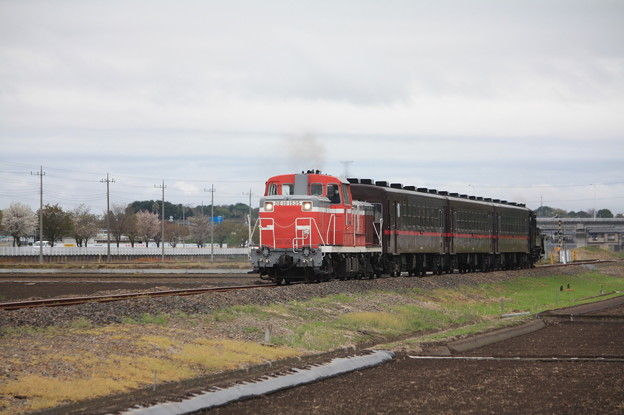 回6100レ DE10 1535+50系客車+C12 66 (7)