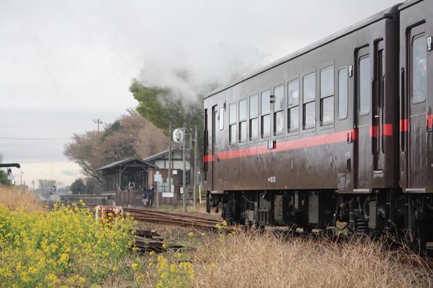 オハフ50 33